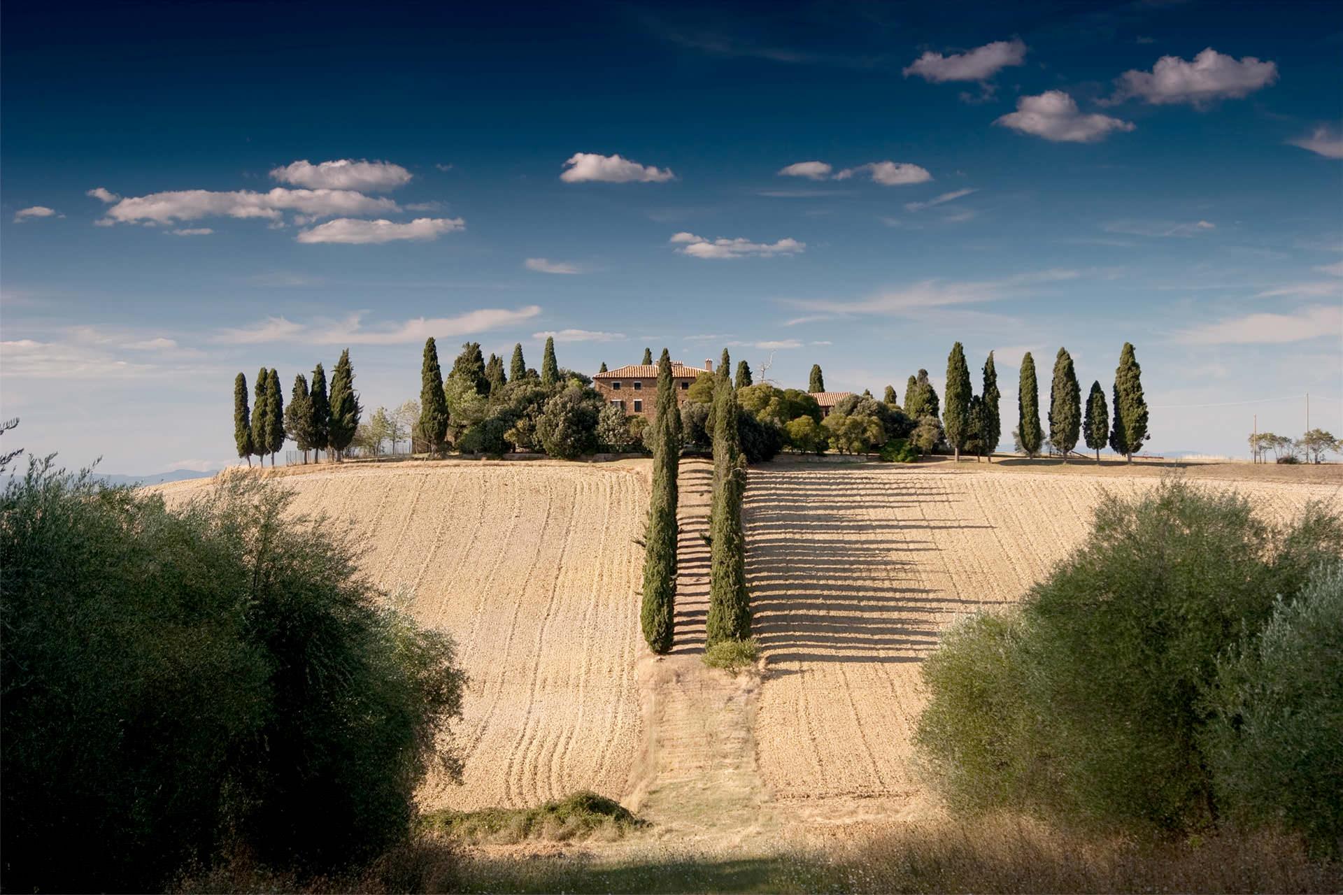 sommerliche Felder in der Toscana